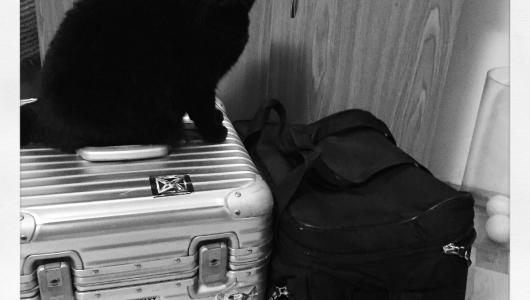 mantas-t-partyzanai-packing
