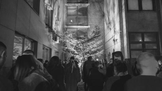 prisukamas-abrikosas-visi-sventieji-2017